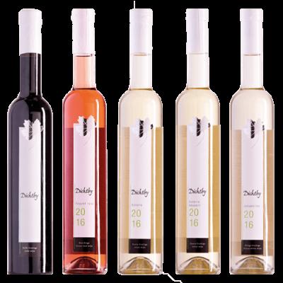 5 Wijnen Nijrees